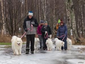 snow_dogs-1